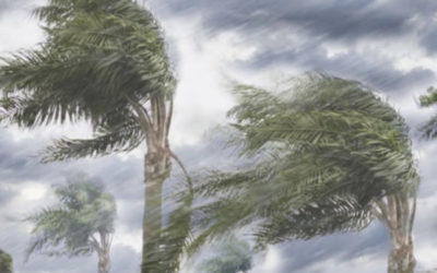What commercial property owners can learn from hurricanes